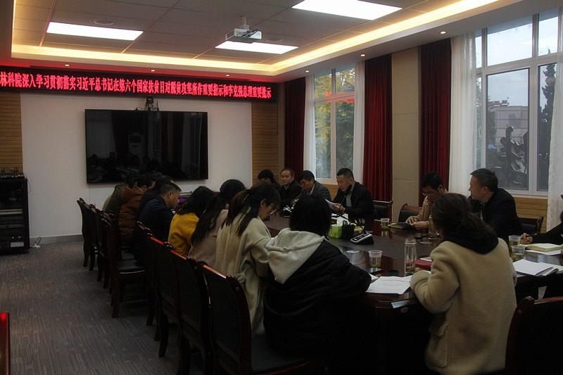省林科院认真学习贯彻党的十九届四中全会精神
